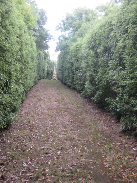 Pathways5
