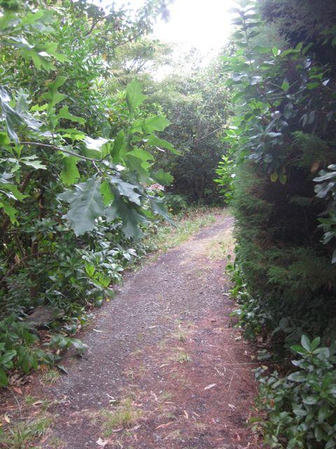 Pathways6