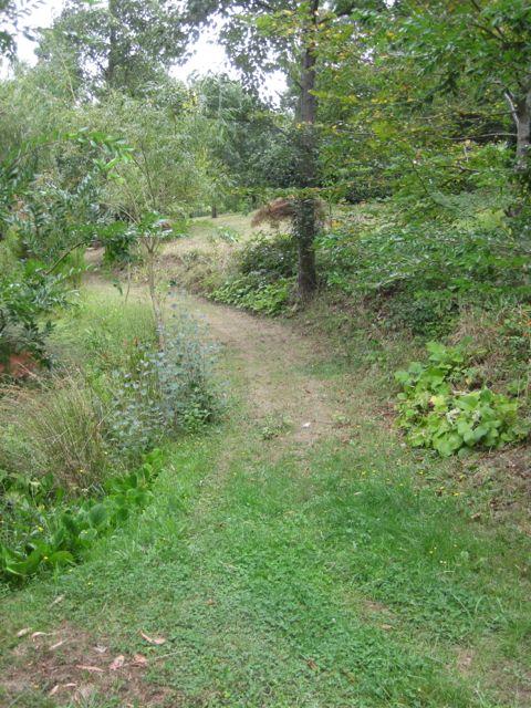 Pathways3