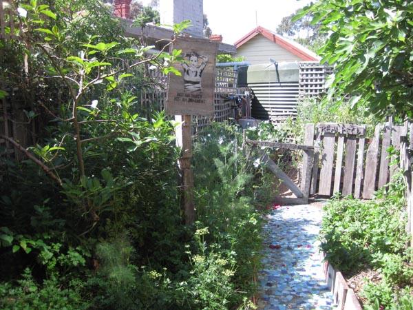 Our House - vegie garden-1-2