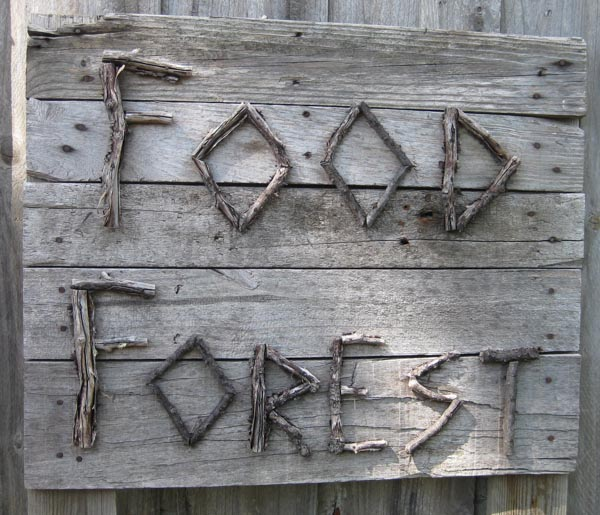 Our House - food forest-9